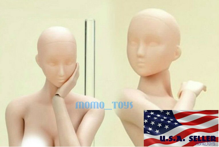 """1//6 American female head sculpt brown hair for Hot toys Phicen 12/"""" figure ❶USA❶"""