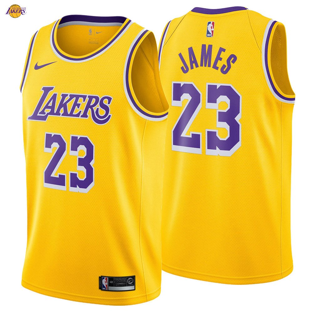 reputable site c9611 2a1b5 LeBron James 23 Los Angeles Lakers Nike Swingman Jersey 2018/19 Icon  Edition NWT