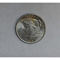 $1 One Dollar 1925 P MS63 ultra frosty very light golden