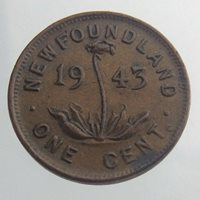 1943 Newfoundland One Cent Penny KM 18 Circulated Coin Pitcher Plant V088