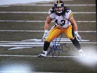 Polamalu, Troy (Pittsburgh Steelers)[TPolamalu211]