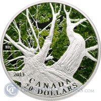 2013 Canada Maple Canopy Spring Silver Proof Coin $20 - With Box and COA