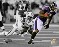 Anquan Boldin Baltimore Ravens - 8x10 Photo with Protective Sleeve #1369