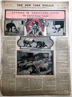 DEC 20, 1908 NEWSPAPER PG #LJ7454- THRILLING LIVES OF CIRCUS ANIMAL TRAINERS