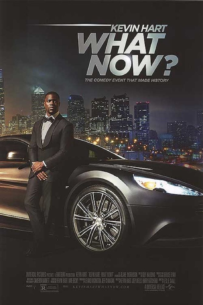 Kevin Hart What Now original DS movie poster 27x40 D//S