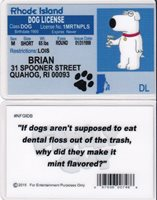 Family Guy The Dog Of Brian Island Griffin Rhode Driver