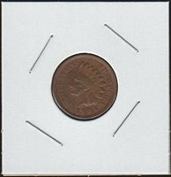 1905 Indian Head (1859-1909) Penny Choice Fine Details