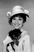 My Fair Lady Audrey Hepburn With Yorkshire Terrier Yorkie Puppy Dog 18x24 Poster