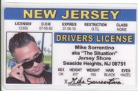 Jersey Shore Mike Sorrentino SITUATION Seaside Heights NJ card Drivers License