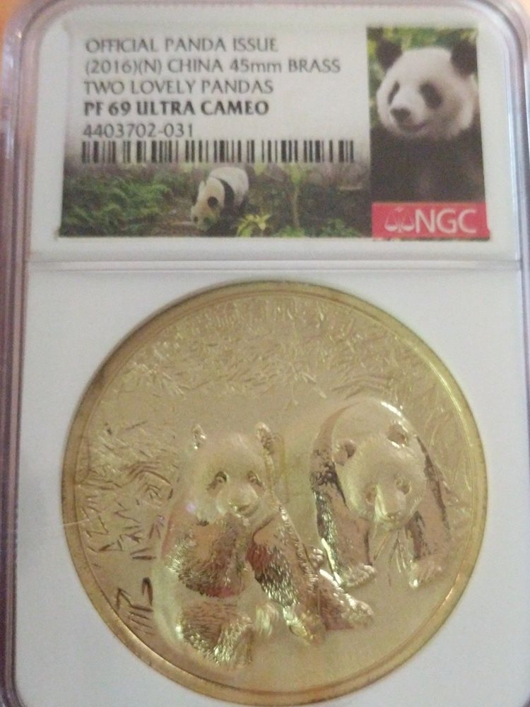 7788757f2251f Official panda issue two lovely pandas bra jpg 750x1000 34mm bra